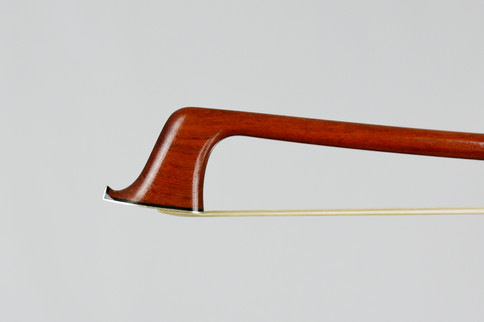 orman new cello.JPG