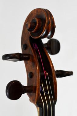 Stadlmann Viola