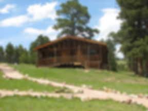 cabins-1-768x576-1.jpg