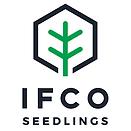 ifco seedlings.png