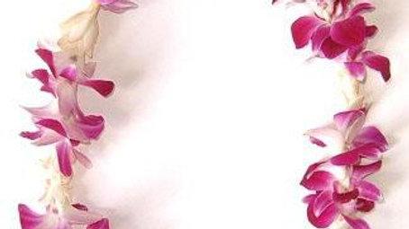Orchid Tuberose Lei