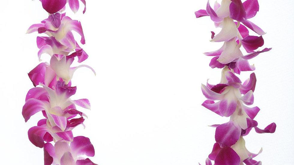 Purple Dendro Orchid Lei