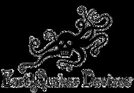 EarthQuaker-Devices-Social-Logo-removebg