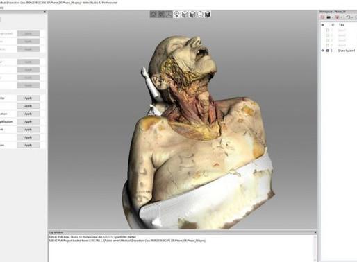 Replica de cadáver anatômico permite estudar corpo humano por completo, sem corpos de verdade