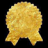 Icon_medal.jpg