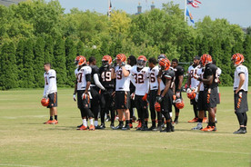 2015 NFL Training Camp Fan Information- AFC Edition