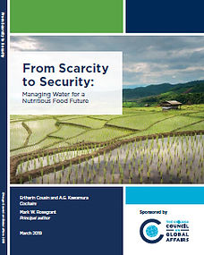 thumbnail_scarcity-to-security-report_24