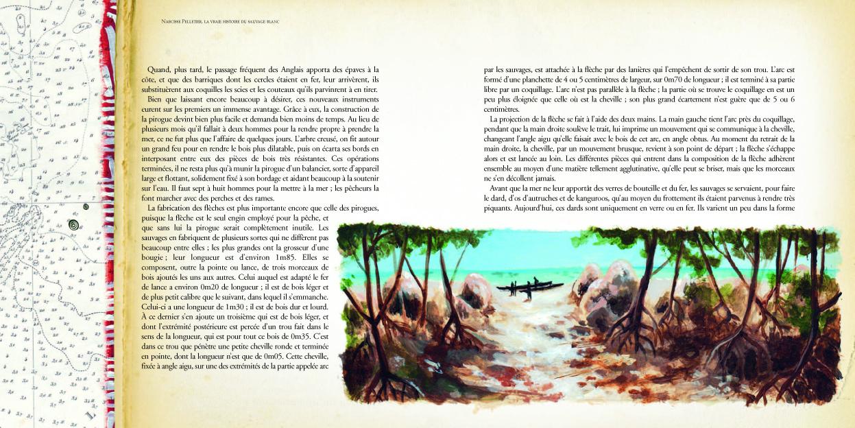 MeP Narcisse ld68