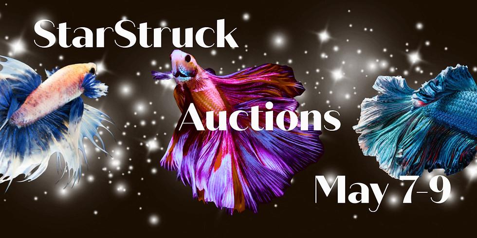 Star Struck Weekend Auction