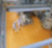 Foto%20Capa%20Quantum_edited.jpg