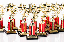 Small Personal Sized Awards