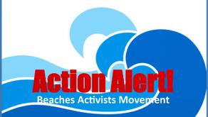 Action Alert - October 11