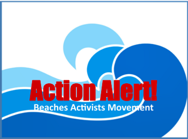 Action Alert 2_page_001.png