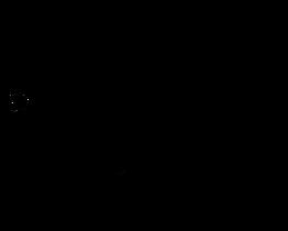 Logo Tanzschule Schwarz.png