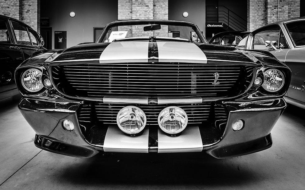 Showroom Mustang.jpg