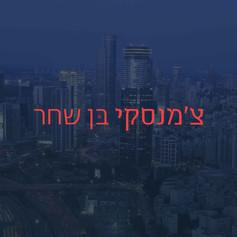 Czamanski Ben Shahar | Logo | Branding | Web Design