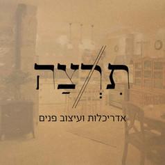 Tirza | Logo | Branding
