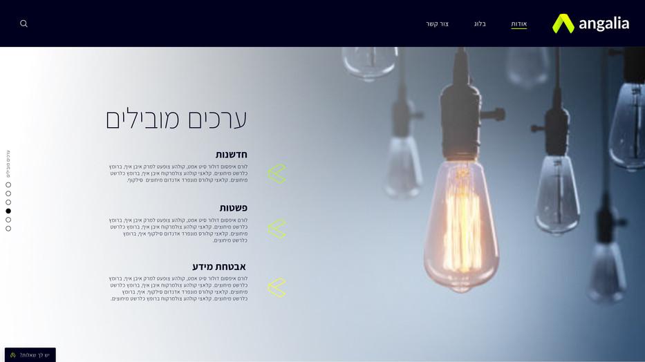 2698_website2-8.jpg