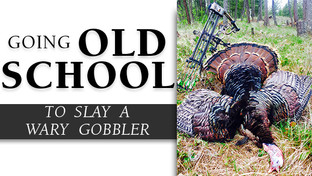 """""""Going Old School"""" to Slay a Wary Gobbler"""