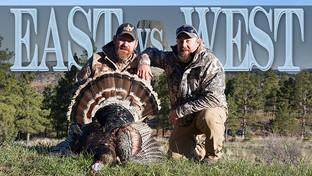 East Vs. West: A Turkey Hunting Showdown!