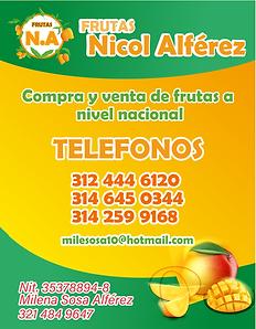 frutas nicol.png