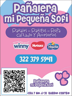 PAÑALERa.png