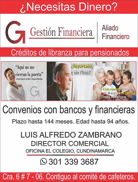 gestion financiera (1).png