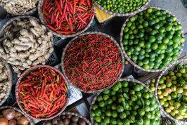 Vegetable colour palattes
