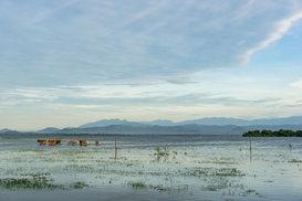 Flooded plains of Uda Walawe