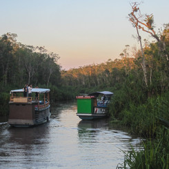 DRIFT THROUGH THE JUNGLE ON A HOUSEBOAT