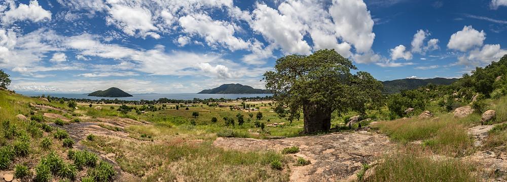 Cape Maclear view baobab Malawi