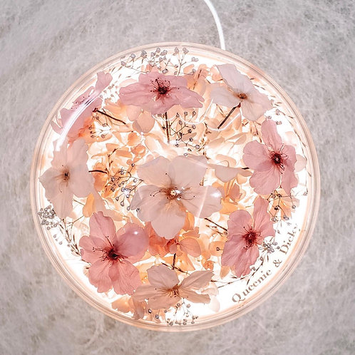The Sakura - Dual