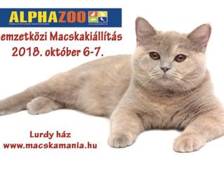 Nemzetközi Macskakiállítás 2018.10.06-07. – Lurdy ház