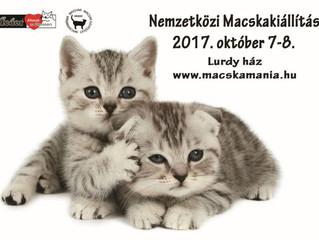 Nemzetközi Macskakiállítás a Lurdy házban