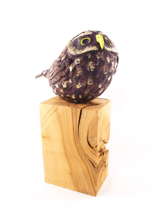 Pentimento Ceramics and Print_Little Owl_bird of prey_owl_birds_wood_bird sculpture_birds in clay_handbuilt ceramics_ceramic owl_