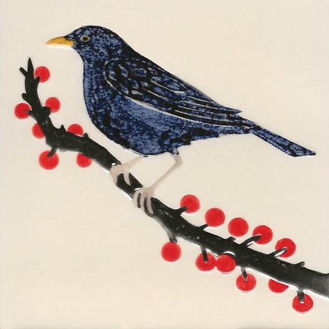 Pentimento Ceramics and Print_Magpies_Handmade_bespoke_ceramic tile_hand decorated_birds_british garden birds_original art_Blackbird