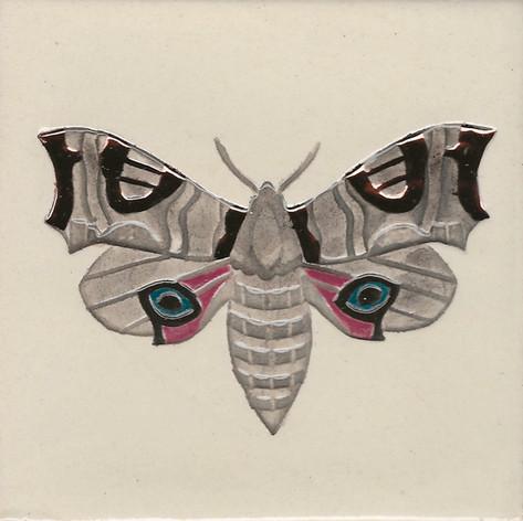 Pentimento Ceramics and Print_Eyed Hawkmoth_insect_Handmade_bespoke_ceramic tile_hand decorated_original art