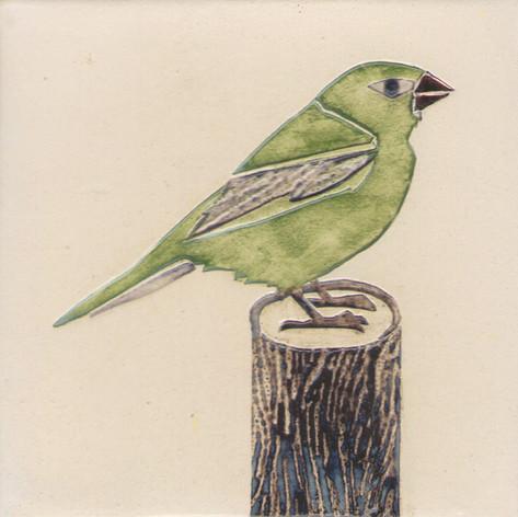 Pentimento Ceramics and Print_Greenfinch_Handmade_bespoke_ceramic tile_hand decorated_birds_british garden birds_original art