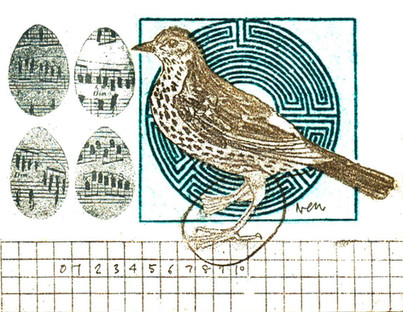 Print_photo-etching_mini print_bird_migration_printmaking_british birds_Pentimento Ceramics and Print_myth_Thrush