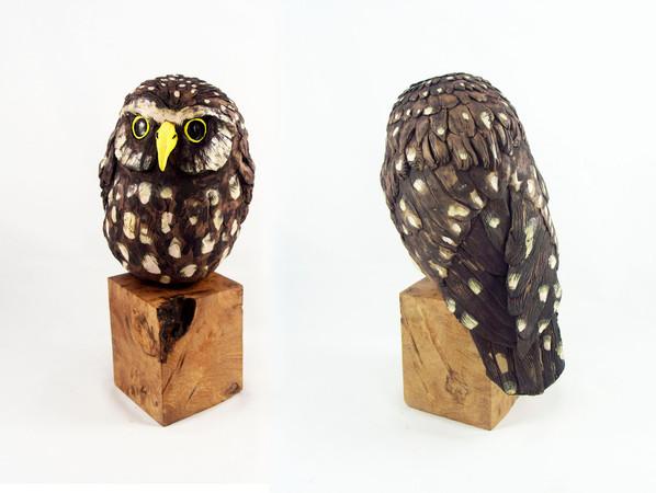 Pentimento Ceramics and Print_Little Owl_bird of prey_owl_birds_wood_bird sculpture_birds in clay_handbuilt ceramics_ceramic owl_