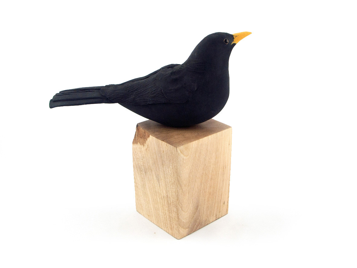 blackbird_bird_garden bird_British bird_sycamore_ceramic bird_birds in clay_hand built_original art_bird sculpture_hand made_Pentimento Ceramics and Print