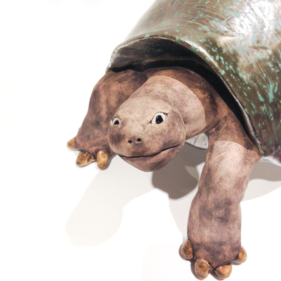 Torsten the Tortoise