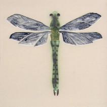 Pentimento Ceramics and Print_dragonfly_darner_insect_Handmade_bespoke_ceramic tile_hand decorated_original art