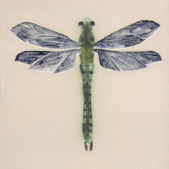 Pentimento Ceramics and Print_dragonfly_darner_insect_Handmade_bespoke_ceramic tile_hand decorated_original art
