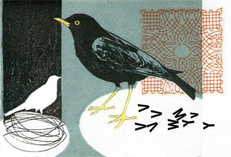 Print_photo-etching_mini print_bird_photo-etching_collograph_letraset_gum arabic transfer_printmaking_british birds_Pentimento Ceramics and Print_myth_blackbird