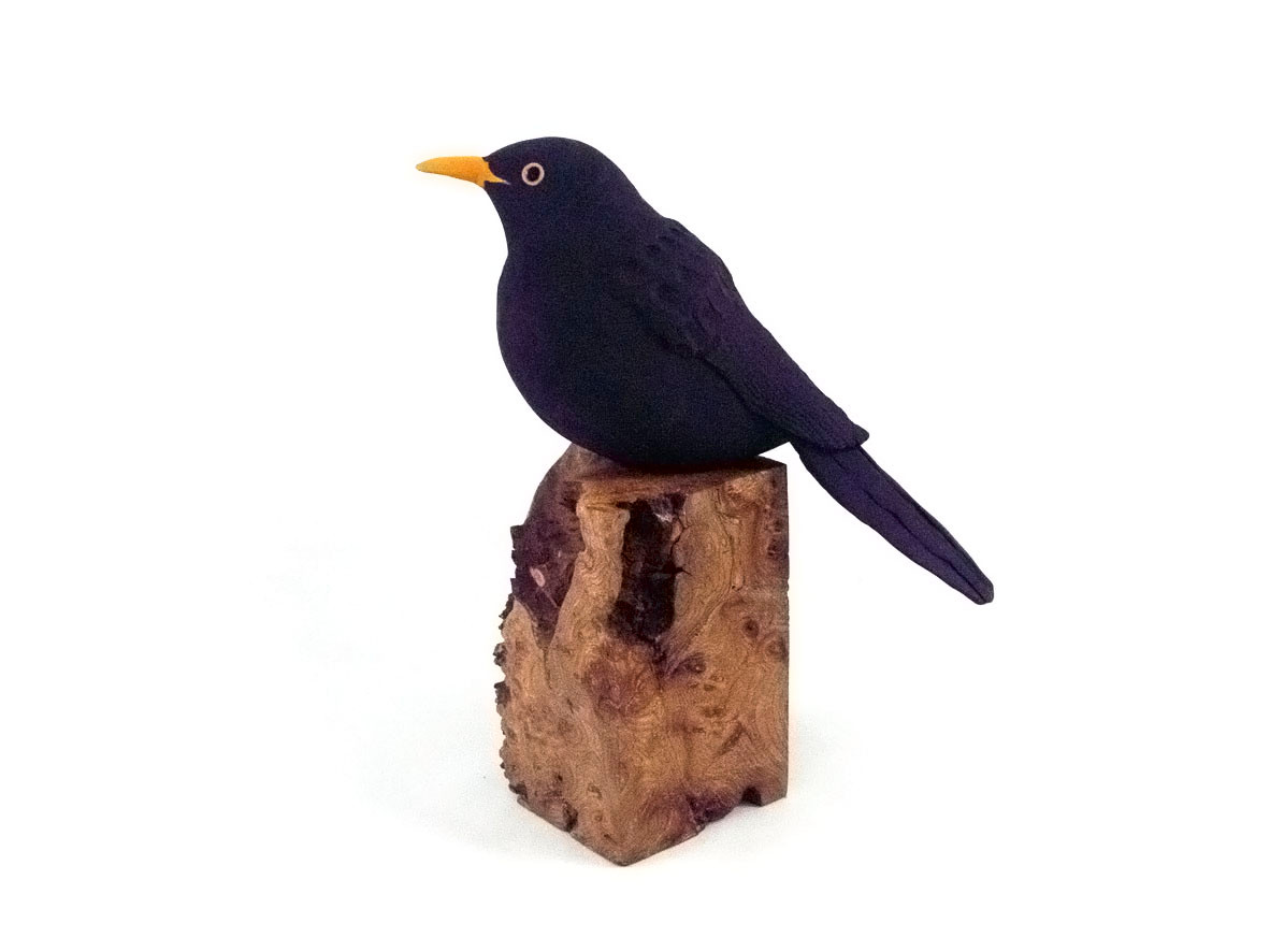 blackbird_bird_garden bird_British bird_elm_ceramic bird_birds in clay_hand built_original art_bird sculpture_hand made_Pentimento Ceramics and Print