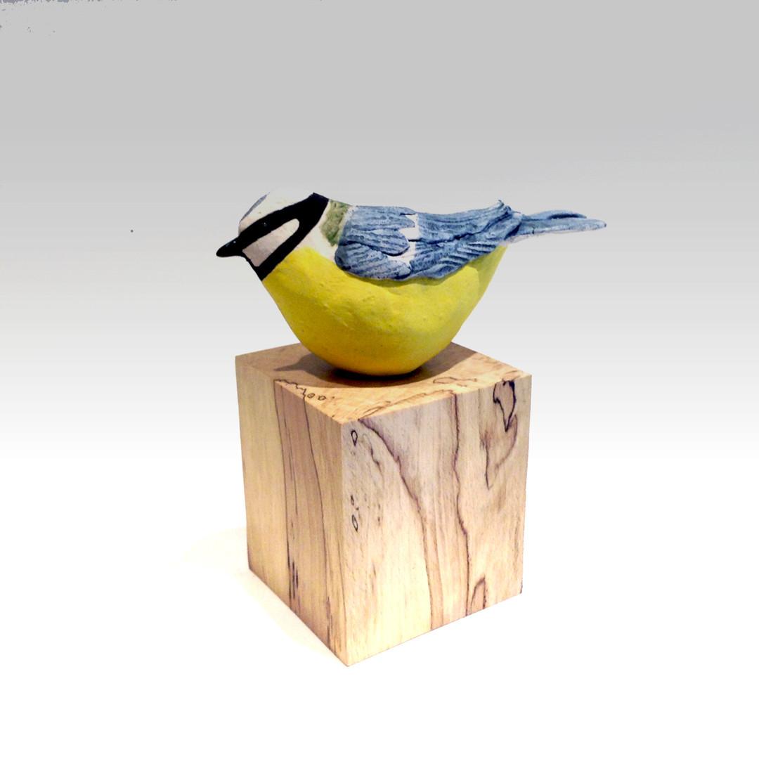 Blue tit_bird_ceramic bird_garden bird_British bird_birch_birds in clay_hand built_original art_bird sculpture_hand made_Pentimento Ceramics and Print
