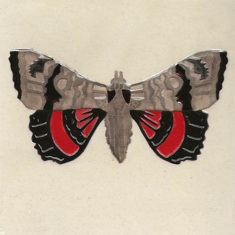 Pentimento Ceramics and Print_Red Poplar Underwing Moth_catocala nupta_insect_Handmade_bespoke_ceramic tile_hand decorated_original art