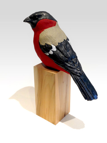 Bullfinch_yew_garden bird_British bird__bird_ceramic bird_birds in clay_hand built_original art_bird sculpture_hand made_Pentimento Ceramics and Print