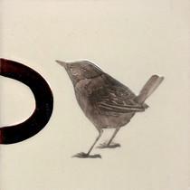 Pentimento Ceramics and Print_wren_king of birds_Handmade_bespoke_ceramic tile_hand decorated_bird_original art